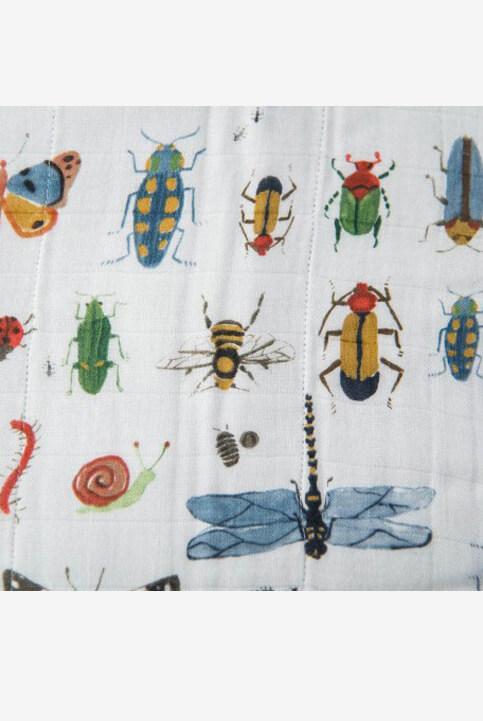manta insectos